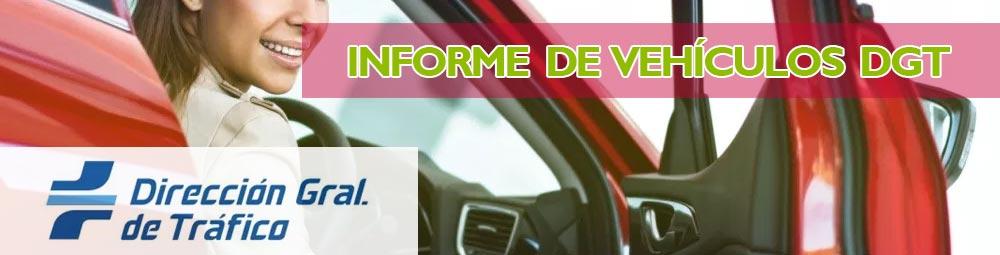 Informe Vehículos DGT (informes en tráfico)
